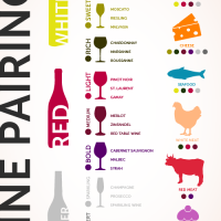 Wine and Food Pairing Guide  | EC Kraus