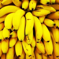 How many bananas does it take to kill you? | Metro News