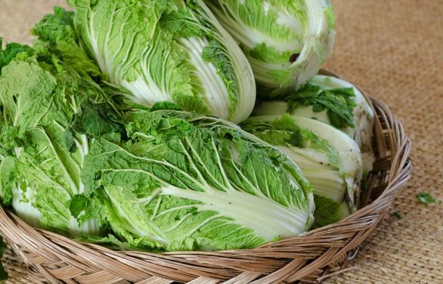 カゴに盛られた白菜