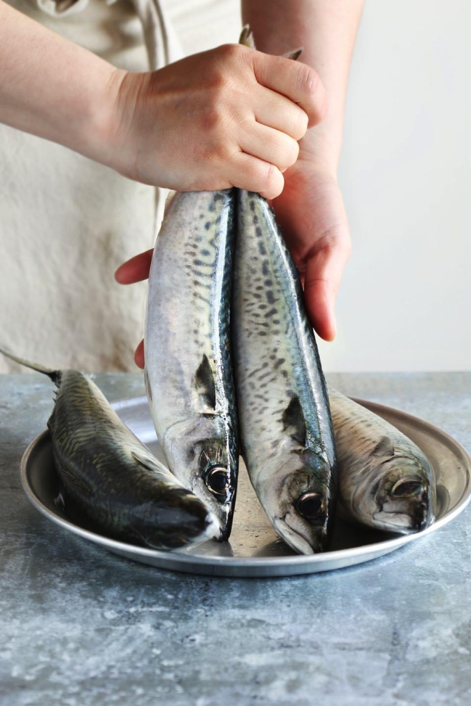 2尾のサバをしっぽをつかんで、お皿から持ち上げているようす。