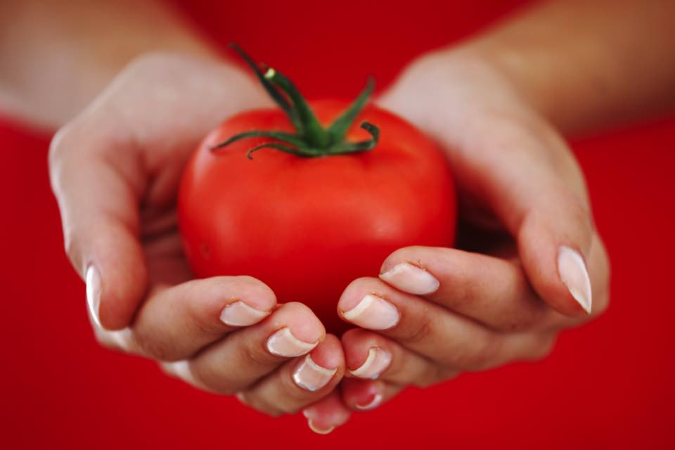 トマトを両手で持っている様子