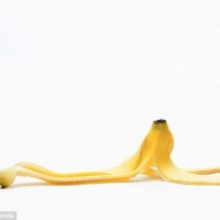Banana skin is packed with nutrients and vitamins that 'can aid weight-loss'  | Daily Mail Online