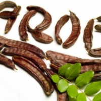 How Carob Can Help Lower Cholesterol Levels - Live Superfoods