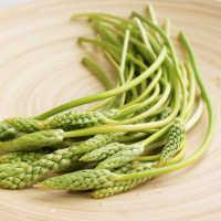 旬が短いセレブ野菜、アスパラソバージュに注目。おいしすぎて止まらない!
