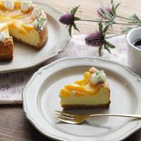 【缶詰レシピ】しっとりなめらか。黄桃のベイクドチーズケーキ